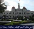Dịch vụ Diệt mối tận gốc tại quận  Gò Vấp