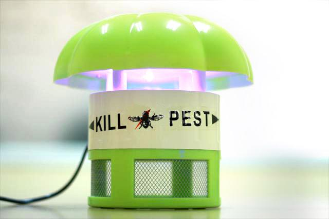 Cách diệt, đuổi côn trùng an toàn và hiệu quả