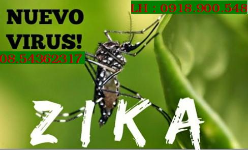 Cách phòng tránh muỗi nhiễm Virus Zika đơn giản
