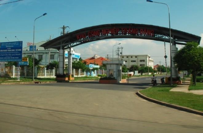 Công Ty dịch vụ diệt mối tận gốc tại Tây Ninh